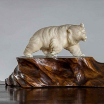 A Meiji period ivory of a bear peering at a snail on a rootwood base